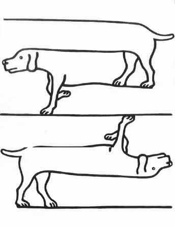 Unmöglicher Hund